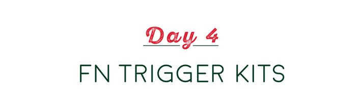 Day 4 of the 12 Days Of Apexmas - FN 509 Trigger Kits